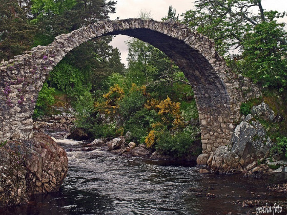 The  Bridge on the River Spey