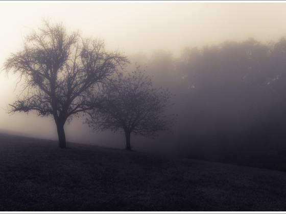 Wenn der Nebel kommt...
