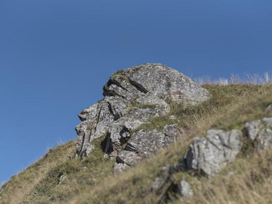 Auf dem Weg zum Wildgärst sind wir auf diesen Berggeist gestossen