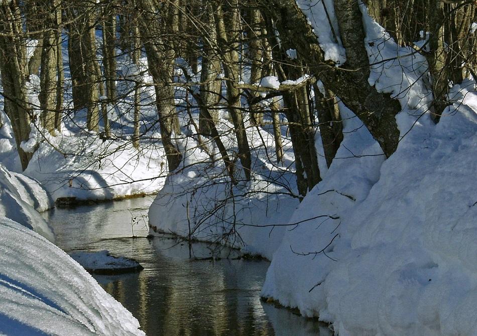 Winter im Prättigau