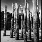Holzpfähle II