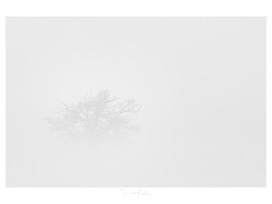 "GI Thema ""Nebel"""