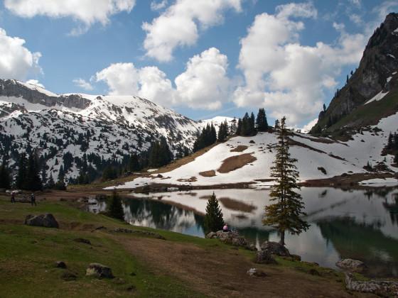 Der Alpenfrühling