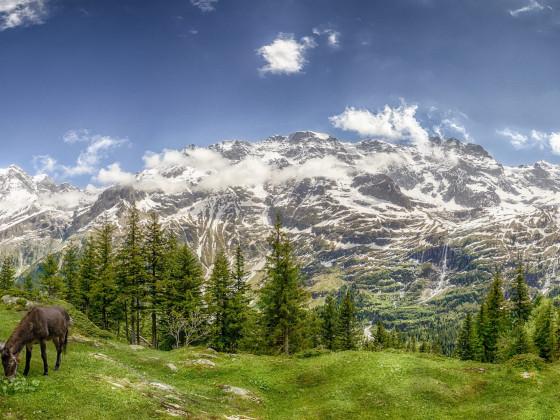 Aussicht vom Obersteinberg