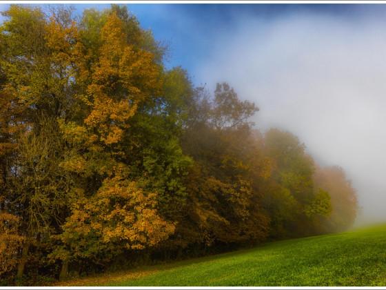 Wenn sich der Nebel auflöst