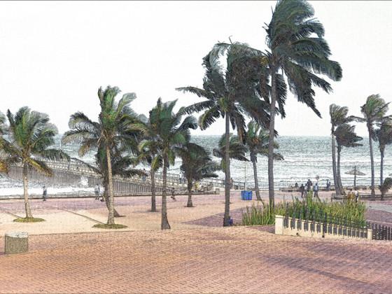 Promenade unter Palmen