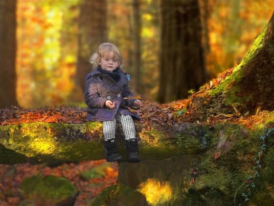 Herbstimpression mit Cinthja