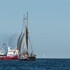 Hanse Sail 2015 II