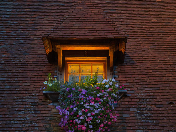 Blumenfenster in Beaune