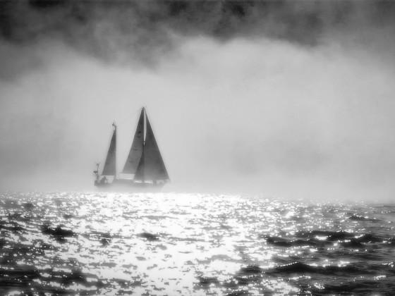 Im Nebel - bearbeitet